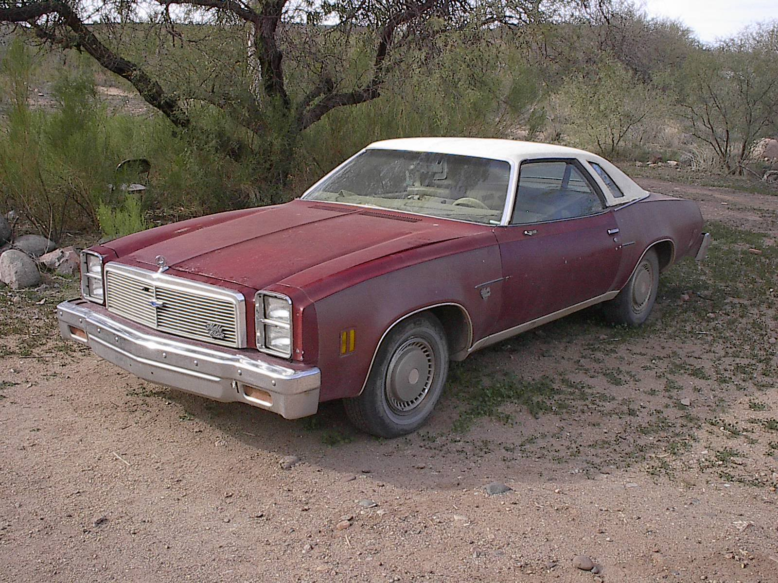1977 Chevrolet Malibu Classic For Sale Autabuy Com